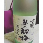 Japanese Sake with my dad for the 1st time wオヤジと日本酒飲むの初めてかもーɿ(。・ɜ・)ɾ ♪#やさぐれ #日本酒 #お正月#冷酒か熱燗かで揉めるの巻