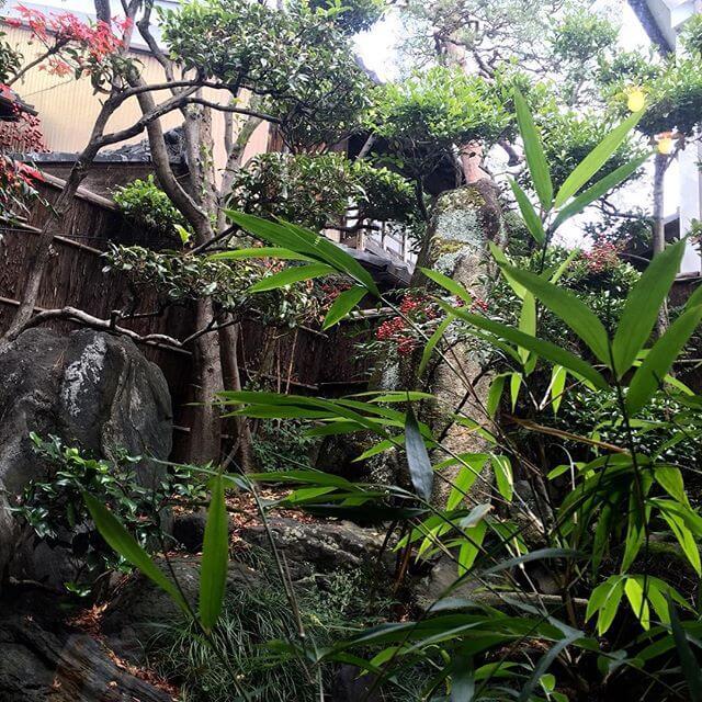 中庭。 ホッとする(´ - `).。oO#ジャパニーズ  #庭